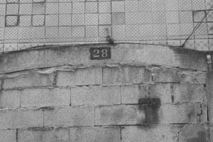Numero 28